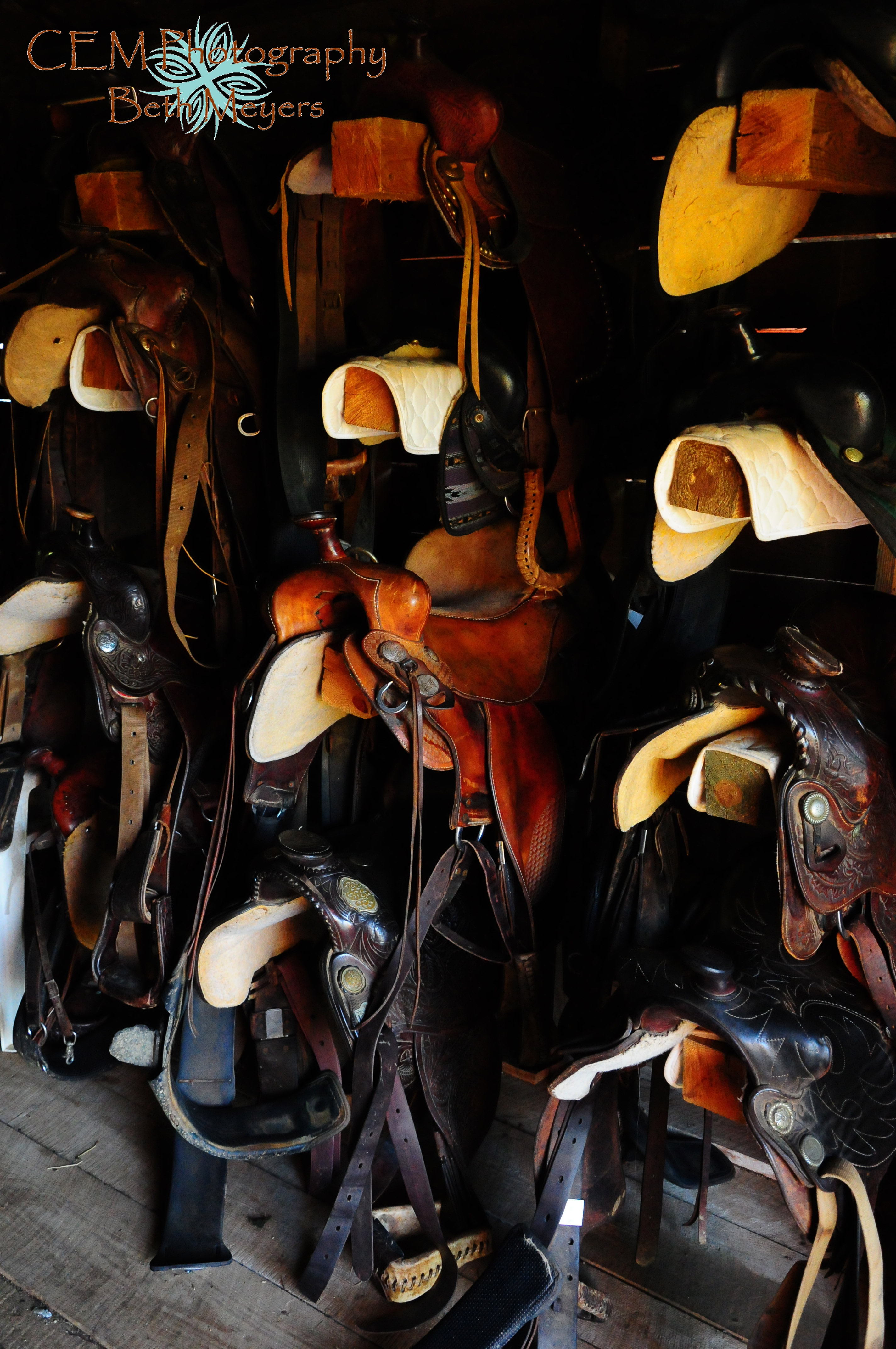 Leather Tack Shop