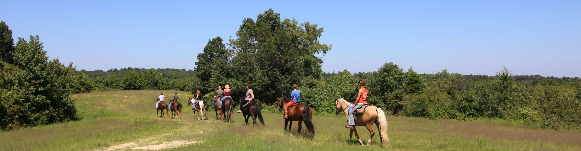 Group of guests trail riding