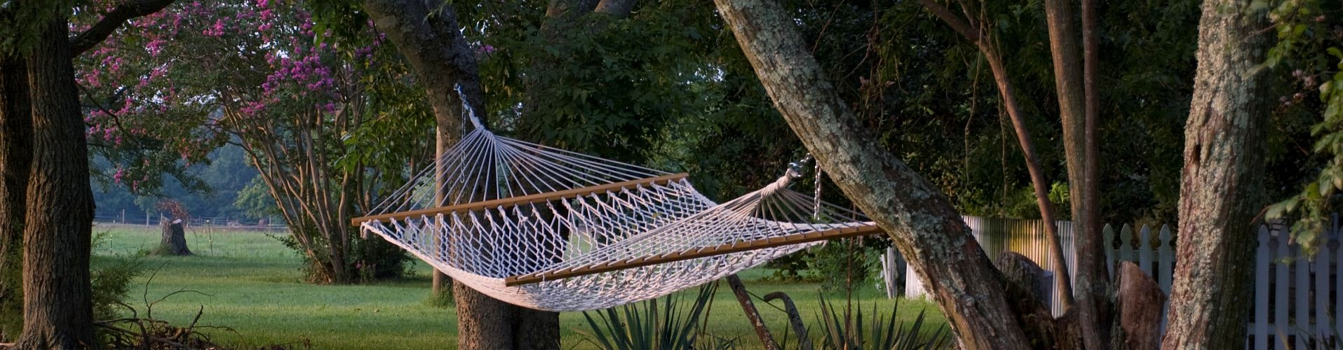 Hammock for relaxing at the ranch
